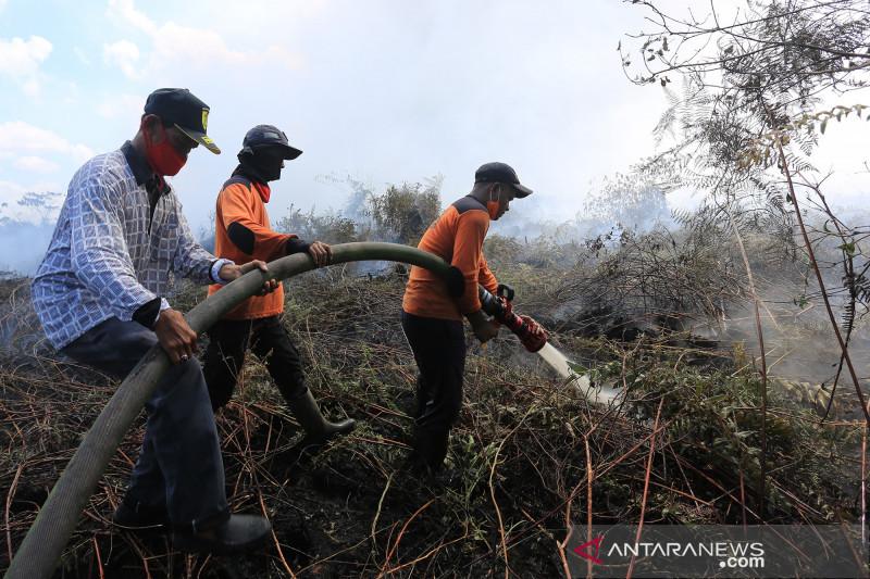 Kebakaran gambut di Aceh Barat hanguskan delapan hektare lahan