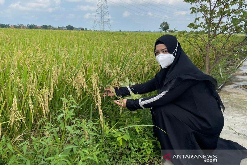 DPR: Perempuan perlu asah pelbagai keterampilan agar berdikari