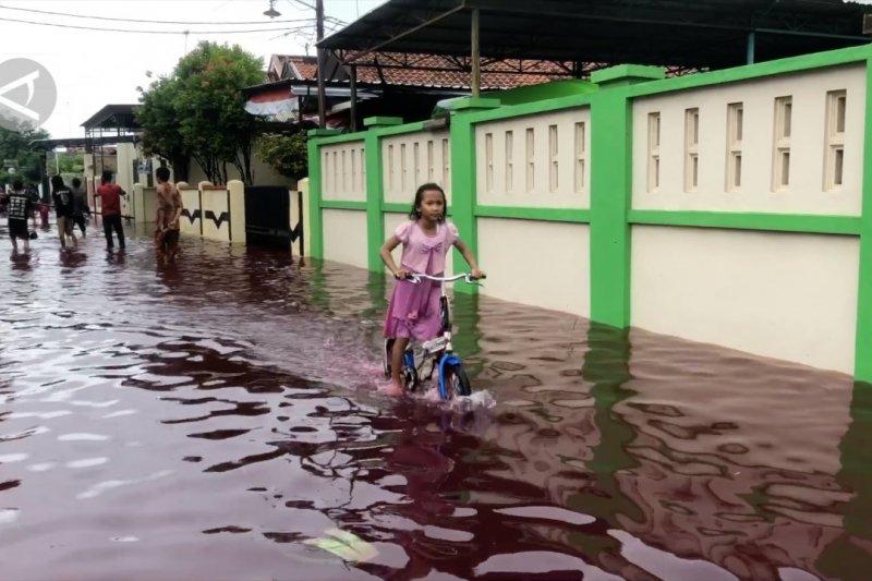 Banjir Pekalongan meluas, 4 Kecamatan terendam