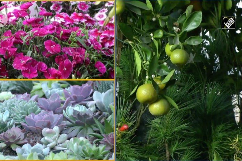 Festival bunga selama 5 hari dimulai di Siliguri