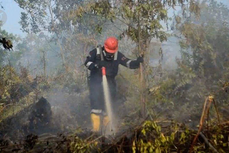 Riau Siaga Darurat Karhutla, 11 helikopter dipersiapkan BNPB