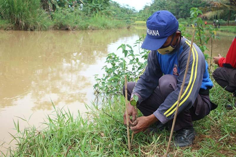 Tagana Banyumas ajak masyarakat lestarikan tanaman mangrove