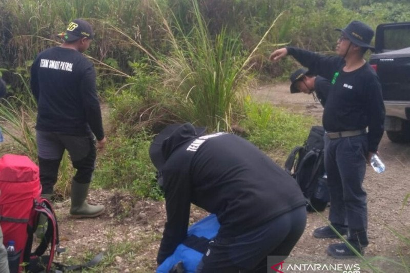 ICS perkuat perhutanan sosial jaga wilayah jelajah harimau Sumatera