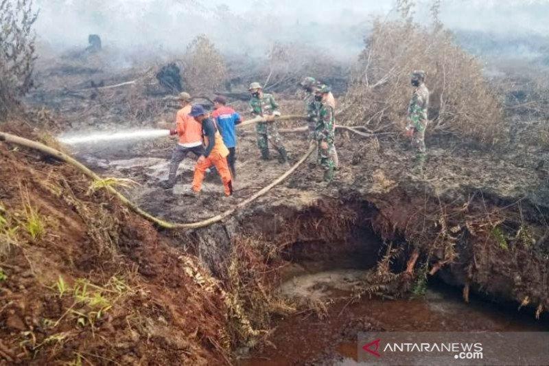 Luas Karhutla di Nagan Raya Aceh sudah mencapai 17,5 hektare