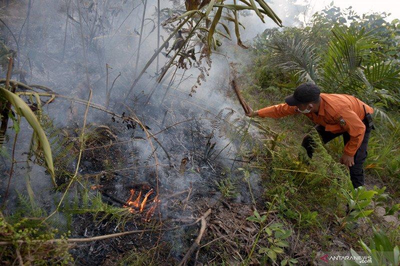Tim gabungan kesulitan air padamkan kebakaran hutan lindung Chevron