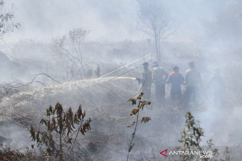 Karhutla seluas 17,5 hektare di Nagan Raya Aceh mulai padam