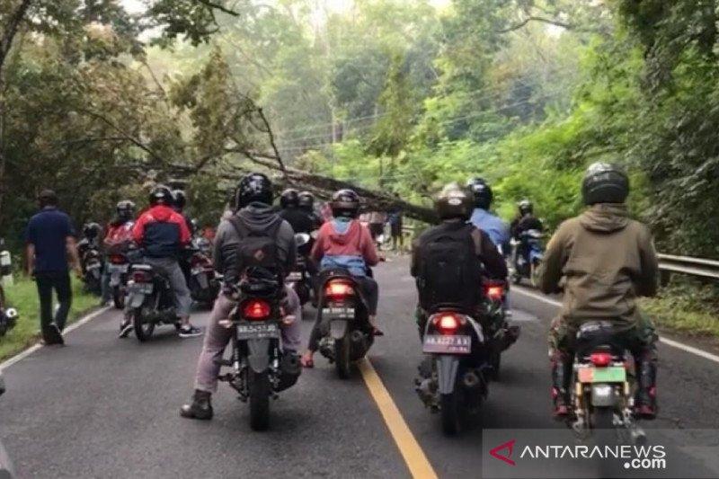 BPBD Gunung Kidul imbau masyarakat waspadai angin kencang
