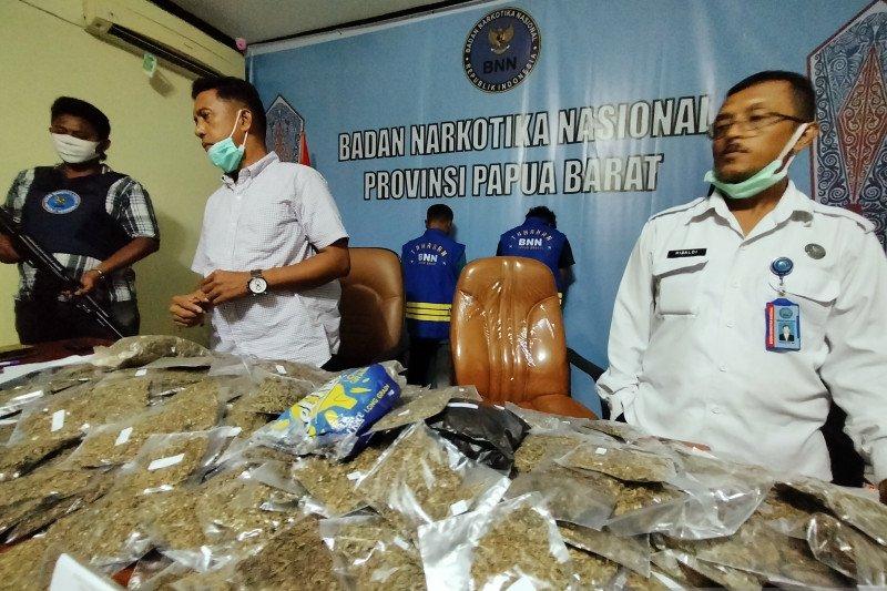 BNN Papua Barat gagalkan penyelundupan 6 kilogram ganja