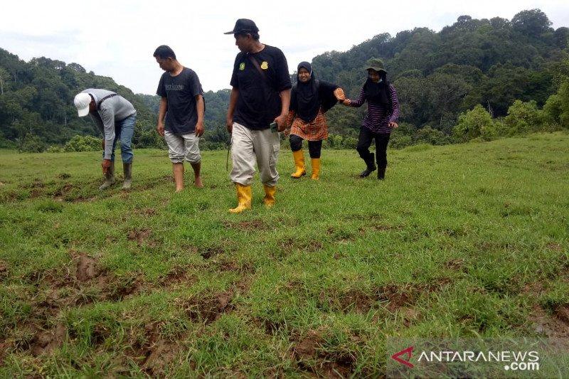 BKSDA Sumbar gelar aksi usir harimau yang memangsa ternak warga Agam