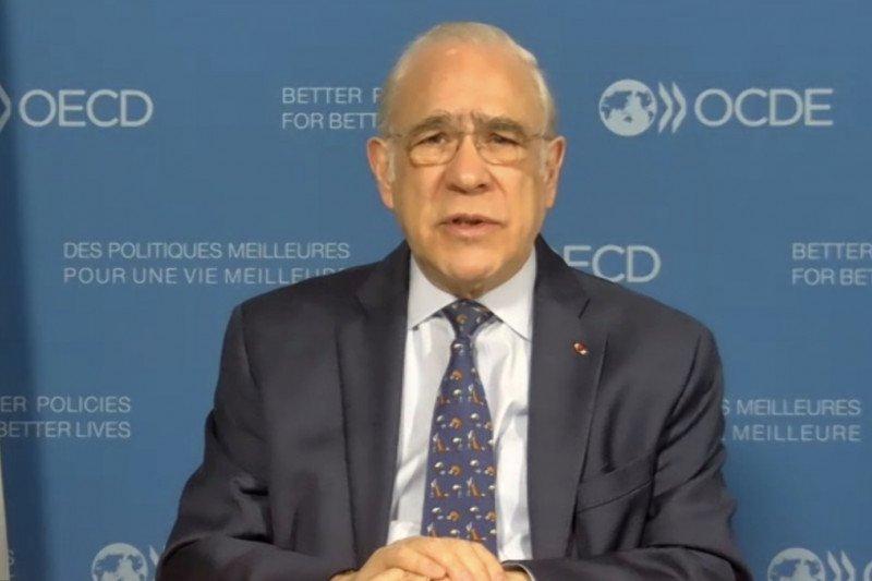 Sekjen OECD minta Indonesia maksimalkan implementasi UU Cipta Kerja