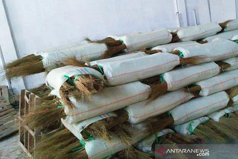 Sumut mulai ekspor lidi ke Vietnam