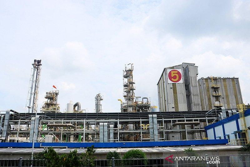 Pupuk Kaltim investasi Rp35,9 triliun bangun pabrik di Bintuni