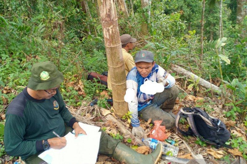 TNKS matangkan kemitraan berbasis wilayah adat di Sungai Gambir Sako