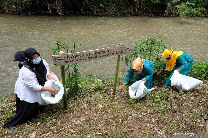 Hari Air Sedunia, WALHI sebut air terkait ekosistem lingkungan lain