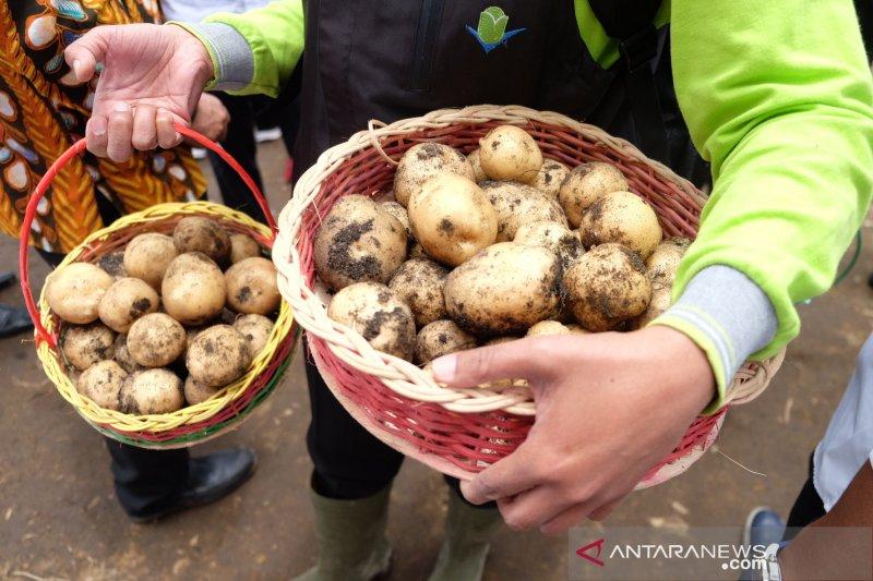Kementan siapkan aplikasi untuk prediksi situasi ketahanan pangan thumbnail