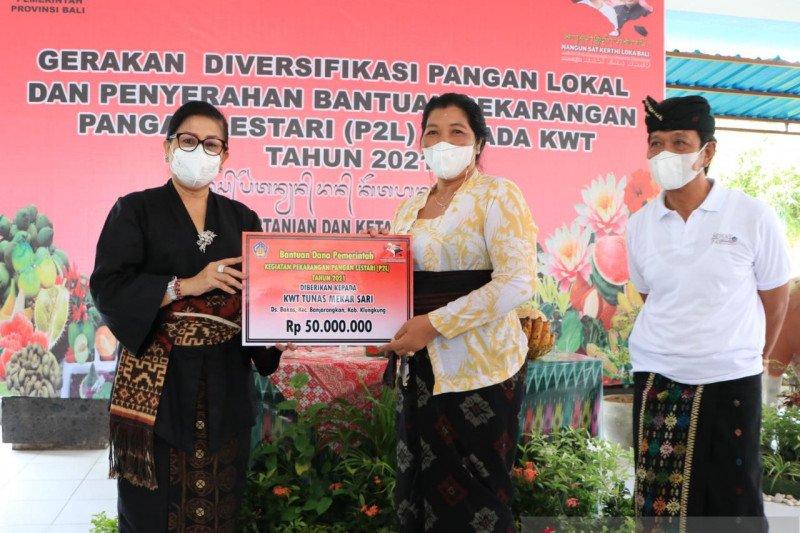 PKK Bali ajak masyarakat kampanye cinta makanan tradisional