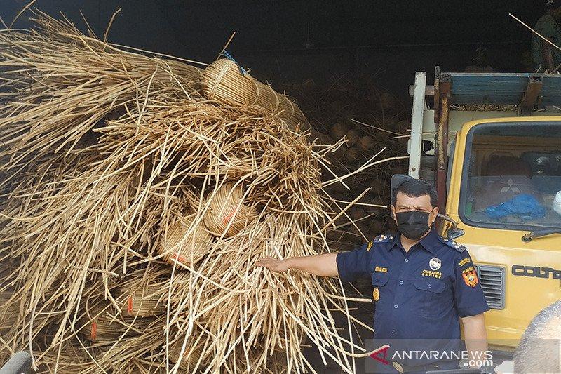 Bea Cukai gagalkan penyelundupan 100 ton rotan ilegal di Kalbar