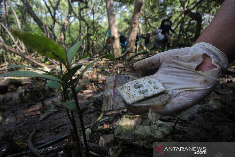 Sampah plastik di Hutan Mangrove Wonorejo