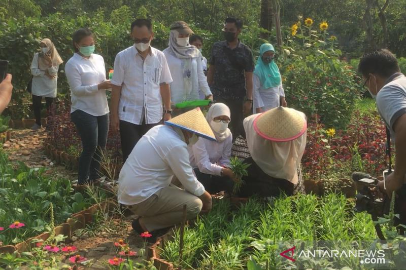 Wagub ajak warga DKI kunjungi Kebun Bibit Kamal Muara