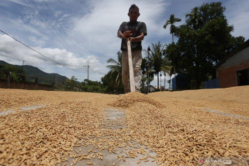 Kemendag fasilitasi BUMN teken MoU ekspor beras ke Arab Saudi