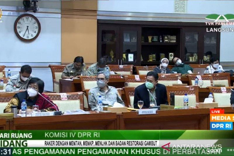 Menteri LHK pertimbangkan pakai area hutan rusak Jawa jadi konservasi