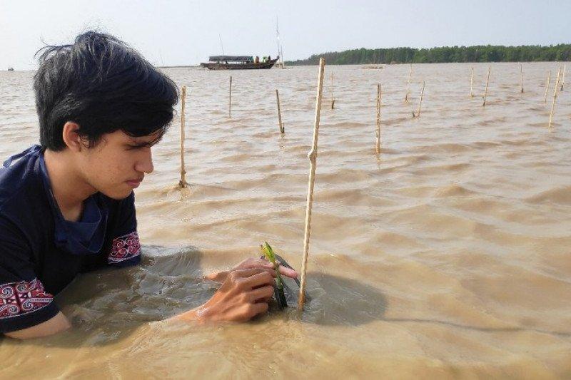 UI lakukan penanaman bakau untuk konservasi Lutung Jawa di Bekasi