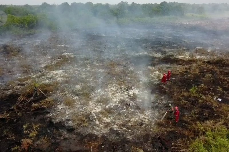 Karhutla di Riau hanguskan 811 hektar lahan