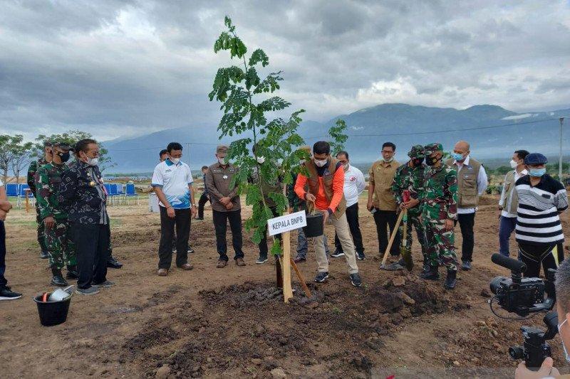Kepala BNPB tanam pohon di lokasi hunian tetap di Sigi