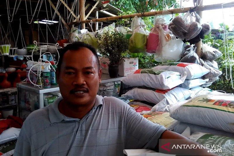 Relokasi PKL tanaman hias dari JIS ke Ketel agar lingkungan lebih asri