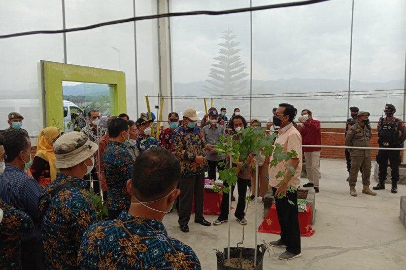 Sultan berharap JAP Kulon Progo jadi contoh pertanian modern