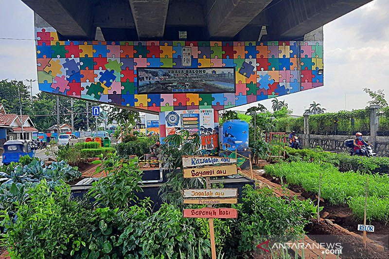 """Urban farming"" tak sekedar manfaatkan lahan kosong"