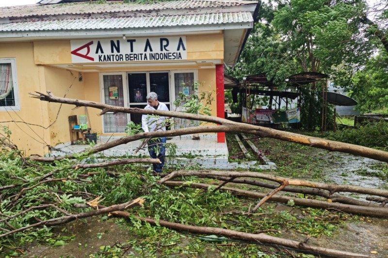 Kota Kupang hampir nyaris lumpuh, sejumlah ruas jalan tertutup pohon tumbang