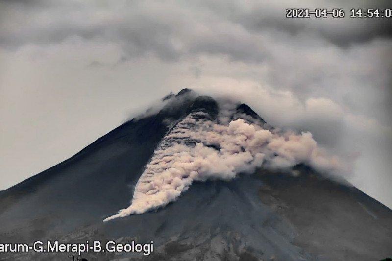 Awan panas guguran Gunung Merapi meluncur sejauh 1,2 km