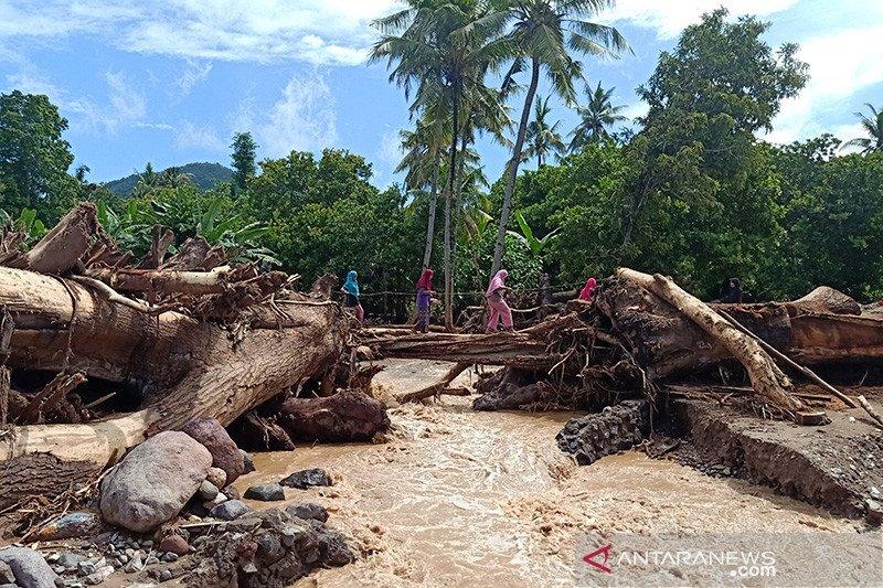 Tumpukan batang pohon memenuhi Kali Mati di Adonara Timur usai banjir