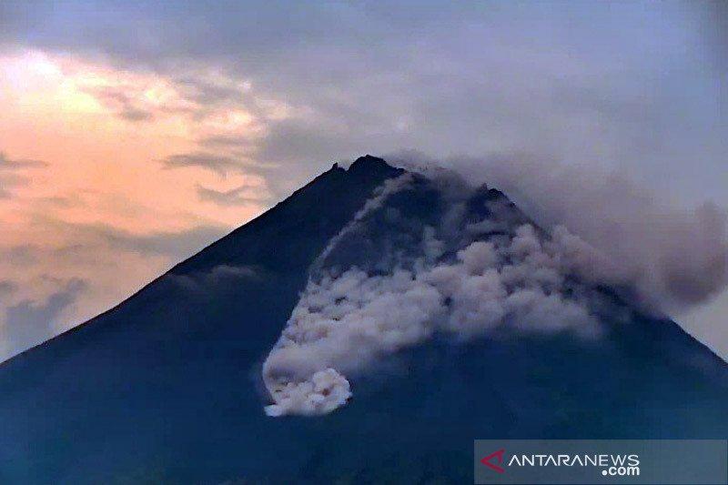 Awan panas guguran Merapi meluncur sejauh 1,5 km