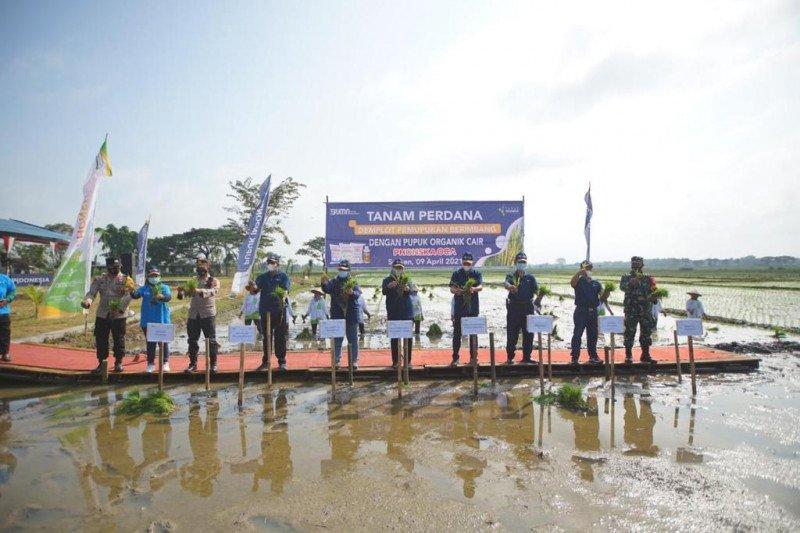 Pupuk Indonesia sosialisasikan penggunaan pupuk presisi pada petani