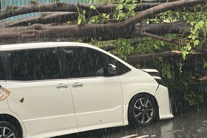 Jakarta kemarin, sanksi ASN mudik hingga pohon tumbang di Kebayoran