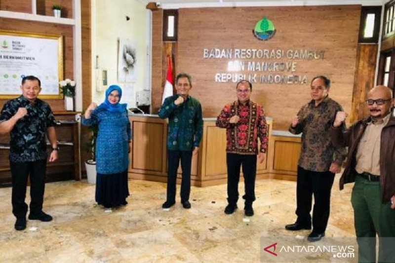 BRGM rehabilitasi 16.319 hektare mangrove di Bangka Belitung