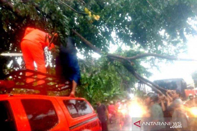 Diterpa hujan deras, banjir dan pohon tumbang landa Kota Bekasi