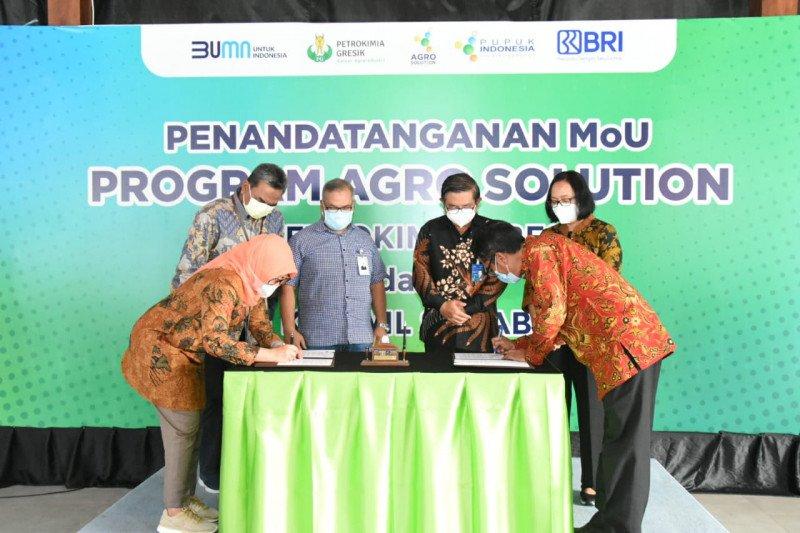 Petrokimia Gresik gandeng BRI bantu permodalan petani di Agro Solution