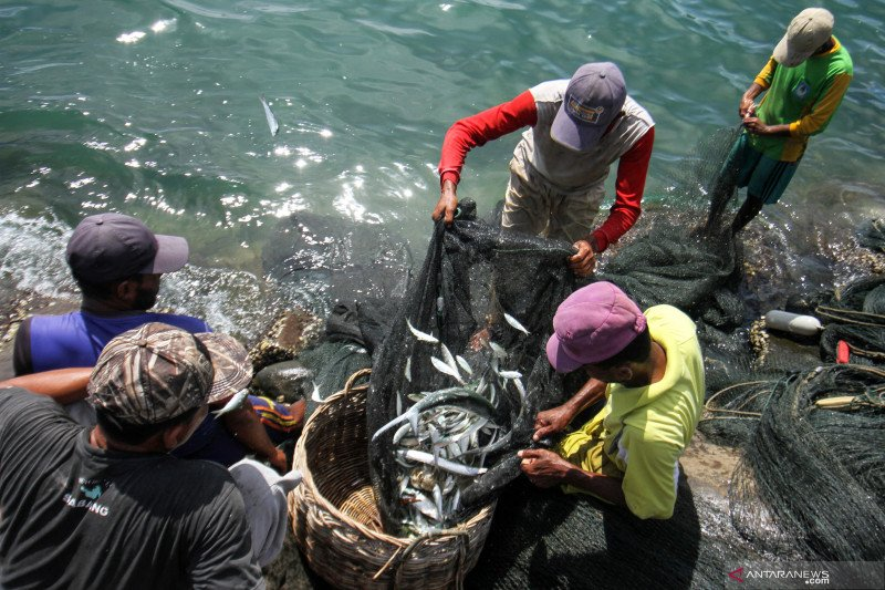 """Perindo siap jadi """"offtaker"""" hasil nelayan dalam induk BUMN pangan"""