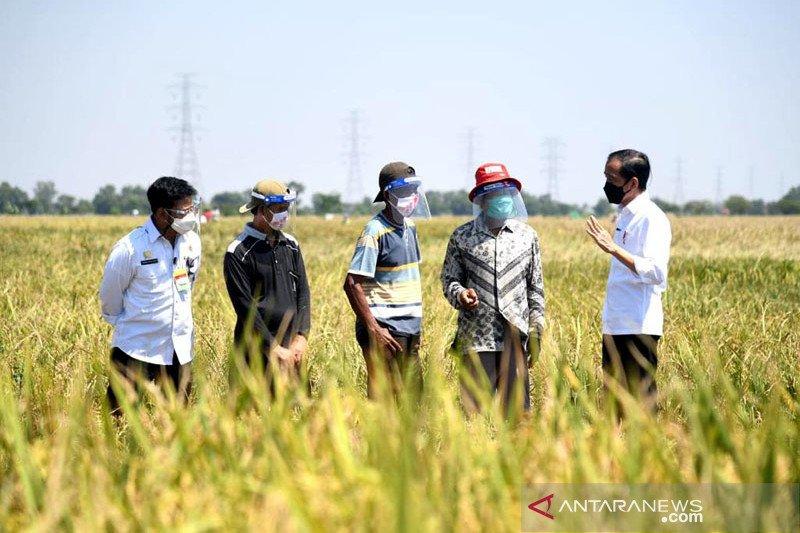 Presiden Jokowi dengarkan keluhan para petani di Indramayu