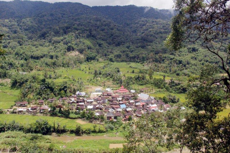WARSI: Apresiasi masyarakat adat jaga dan kelola hutan berkelanjutan