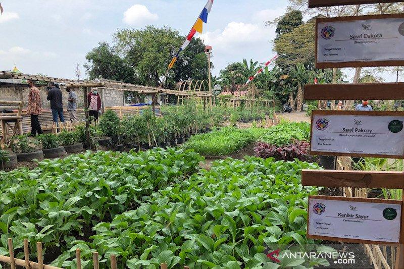 Food estate Yogyakarta untuk penanganan stunting hingga wisata