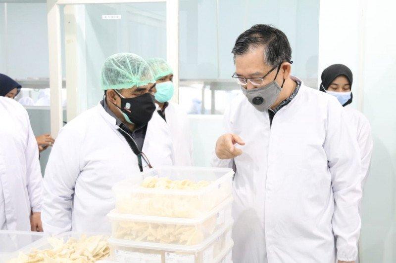Pemprov Jatim dorong peningkatan ekspor sarang burung walet