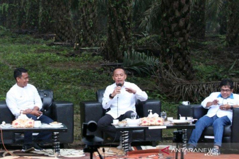PTPN V capai produktivitas sawit muda tertinggi di Indonesia