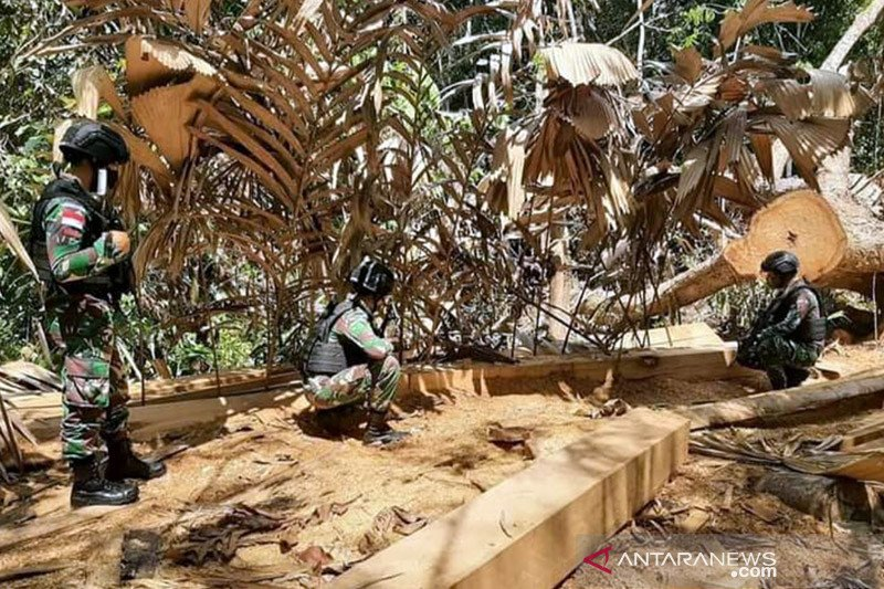 Satgas Pamtas amankan kayu olahan ilegal di perbatasan RI-Malaysia