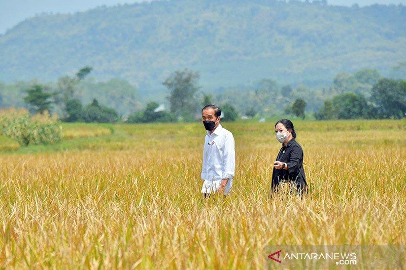 Puan: DPR maksimalkan fungsi pengawasan majukan pertanian