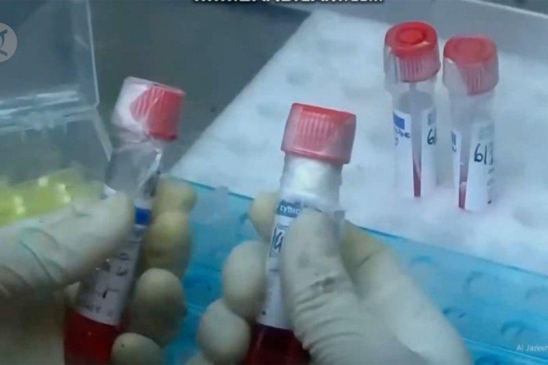 BPOM yakin vaksin Merah Putih dapat diproduksi massal akhir 2021