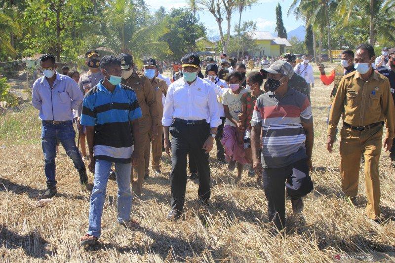 Menko PMK tinjau penanganan dampak bencana alam di Kupang